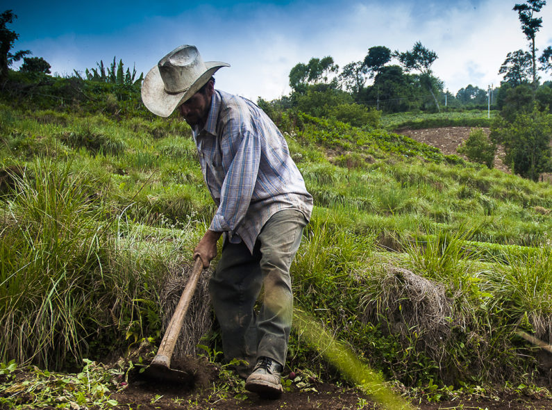 A farmer tends to his fields in El Salvador