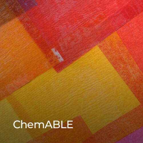 ChemABLE supports, represents, and advocates for the global disability community through knowledge sharing, capacity building, fostering resilience, and eliminating stigma and barriers surrounding disability.